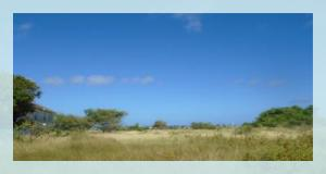 Casurina Estates Lot 178